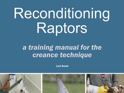 cover of creance training manual