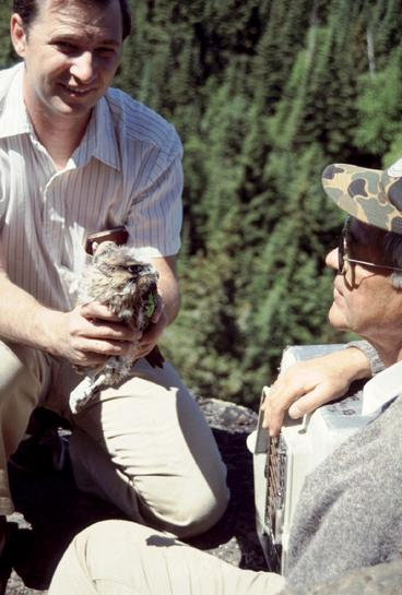 Dr. Redig and Bud Tordoff with a peregrine falcon