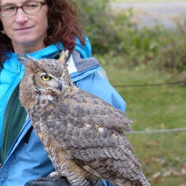 A Raptor Center volunteer with Lois the great horned owl